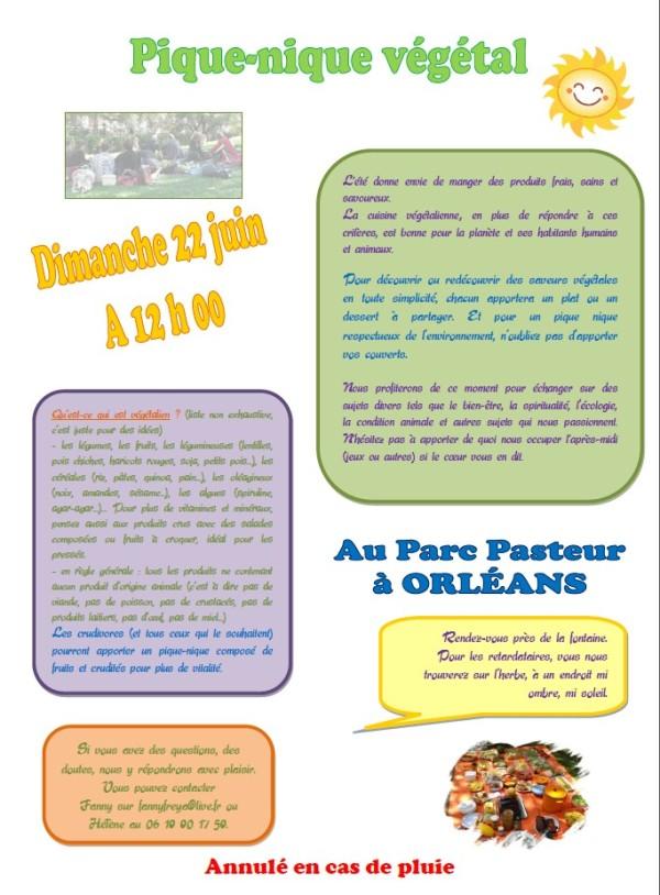 Pique nique végétal du 22 juin 2014
